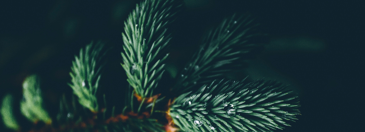 Jul og gaveindpakning
